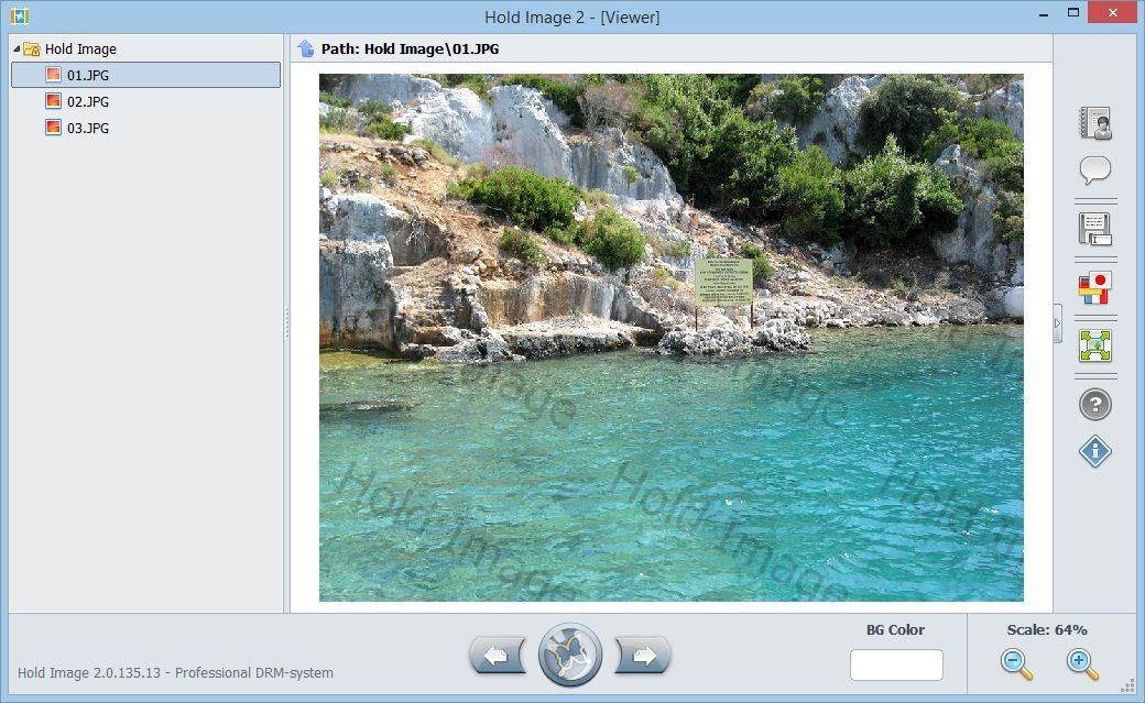 download hold image viewer