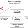 Action Learning (MBA)
