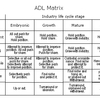 ADL Matrix (MBA)